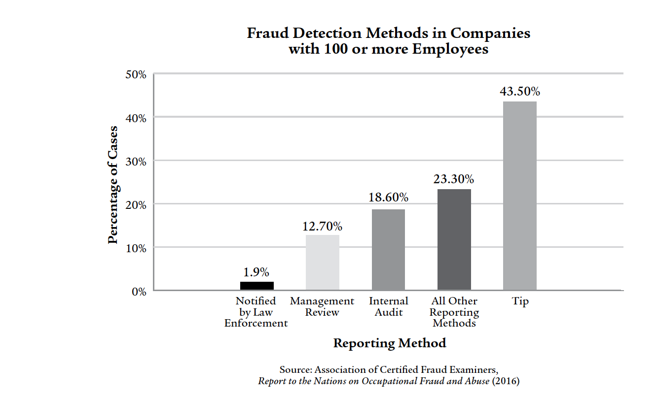 Fraud Detection Methods in Companies with 100 or More Employees